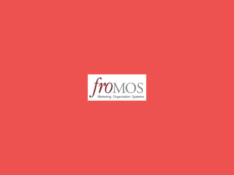 froMOS Ansprechpartner China